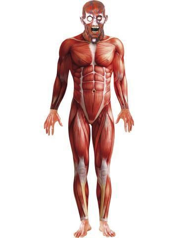 Men's Anatomy Halloween Costume